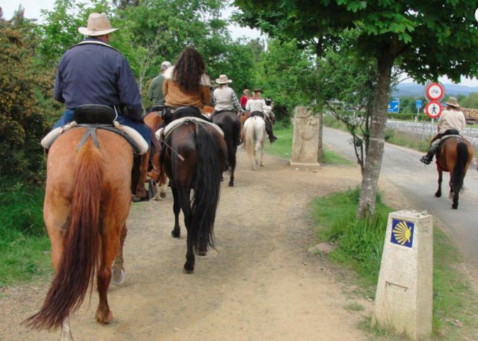 Ride The Camino Frances
