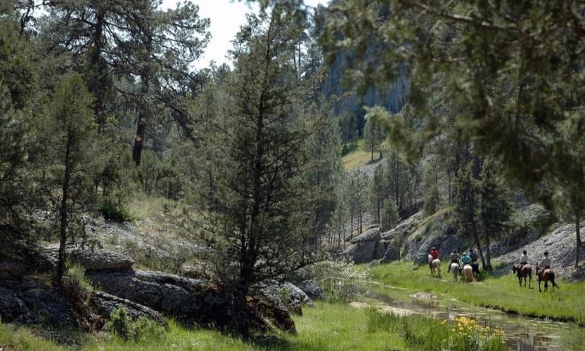 Camino El Cid - Nature, History & Romance