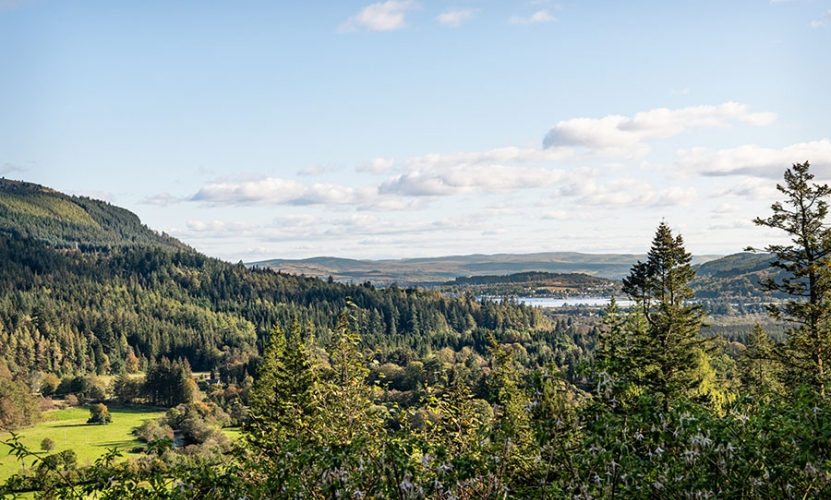 Holy Loch from Benmore Botanic Gardens