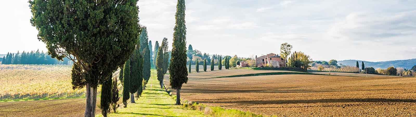 The Magic of Tuscany and the Road to Rome