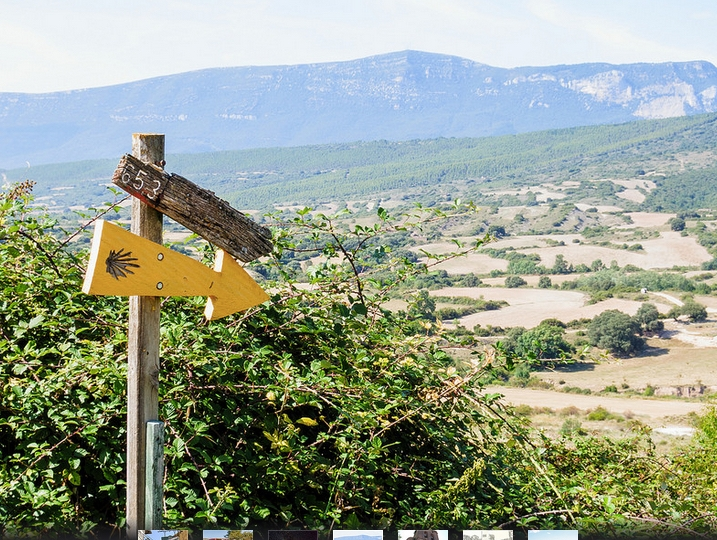 Camino Aragon is also the GR653 - also signposted with the Scallop Shell and Yellow Arrow