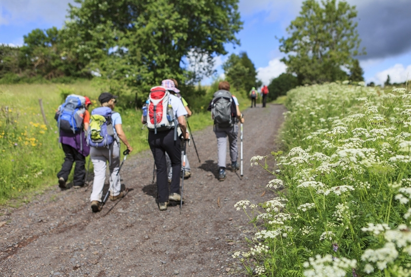 Guided Day Walks In Scotland