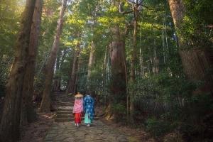 Kumano Kodo - Japan's Camino