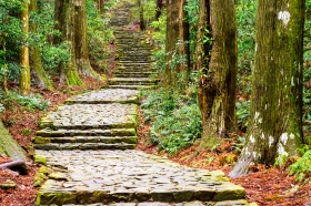 Paved Mountain Trail