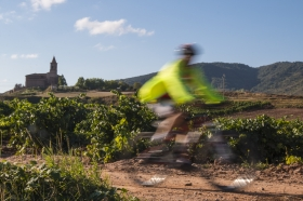 Whizzing Through The Vineyards of La Rioja