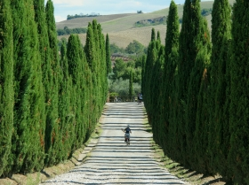The Trail from Siena to Bagno Vignoni