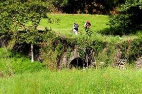 Walking Through Green Galicia