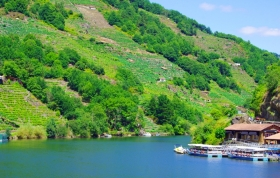 Catamaran boats offer trips on the River Sil through canyons fringed with terraced vineyards.