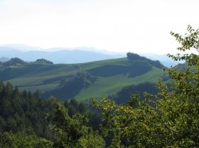 Lush Umbrian Landscapes