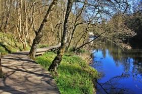River Clyde Walkway